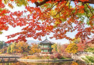 Vé máy bay đi Hàn Quốc giá rẻ 2021 | Thông tin chuyến bay mới nhất