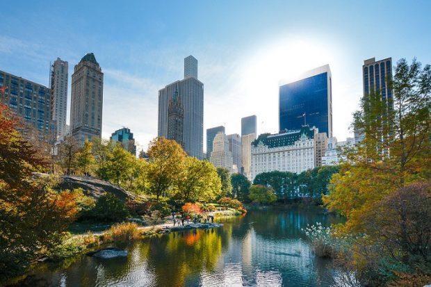 Công viên trung tâm Central Park - lá phổi xanh của thành phố không ngủ